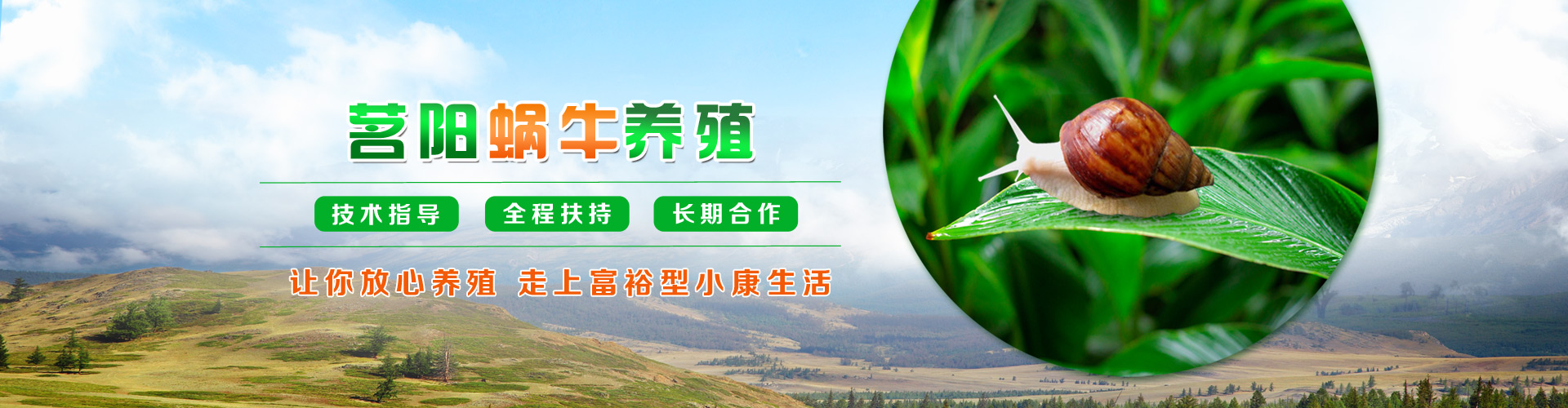 蜗牛banner1